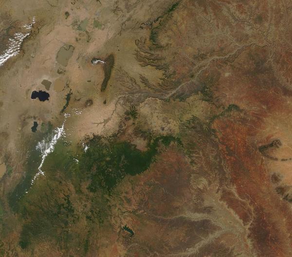 Ethiopia (Bale Mts)