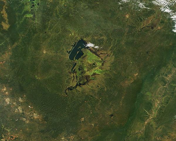 Zambia, DRC, Lake Bangweulu