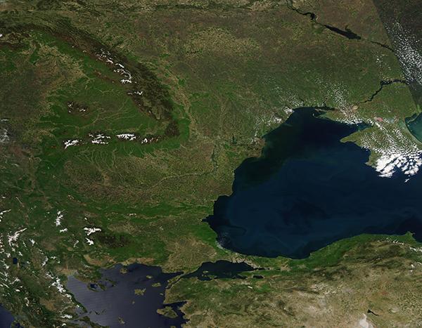 Romanaia, Carpathian Mts, Bloom in the Black Sea