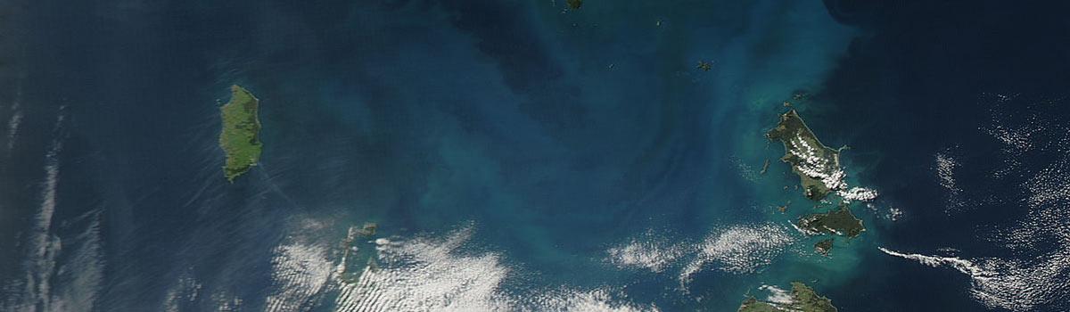 Phytoplankton bloom in Bass Strait, Australia