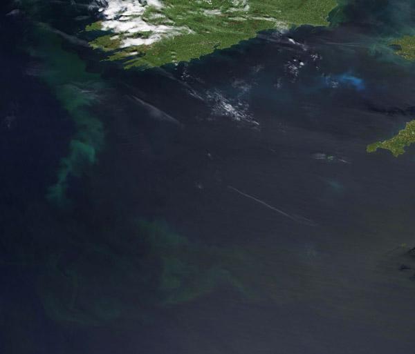 Phytoplankton Bloom off Ireland