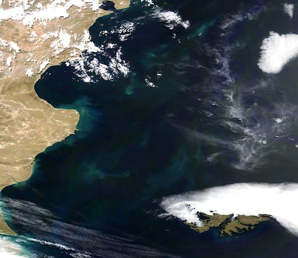 Phytoplankton Bloom off Argentina