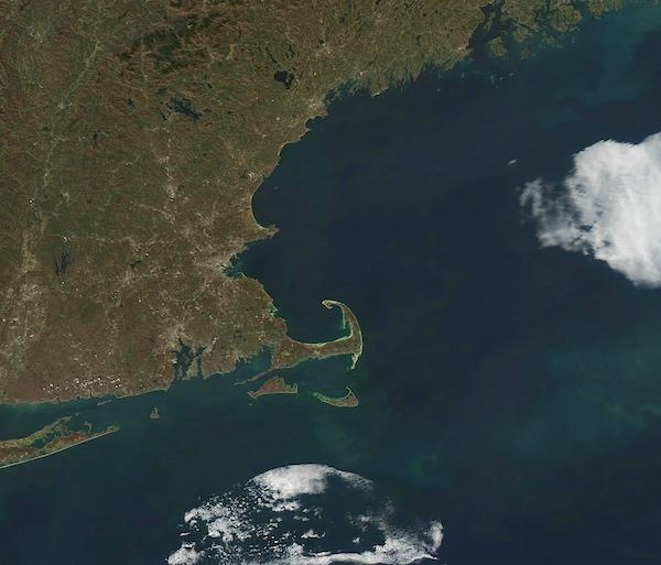 Phytoplankton Bloom off New England