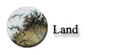Land Team Website Link